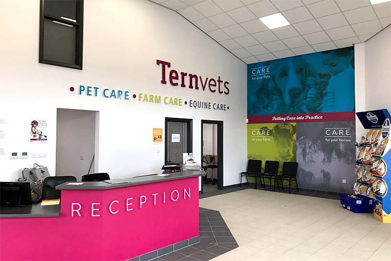 Tern Vets Reception
